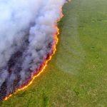 Dünya'nın Aksine Brezilya'da Sera Gazı Emisyonları Artıyor!