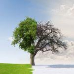 ABD'de Saatler İçinde 30 Derece Birden Sıcaklık Düşüşü Bekleniyor!